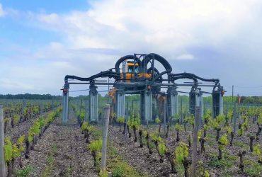 Ecoprotect Cellule S6 Gregoire traitement des vignes à leognan en prestation
