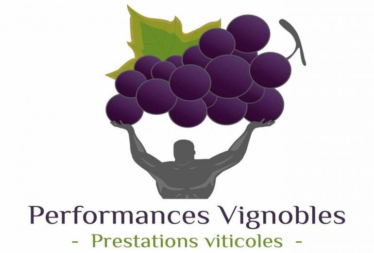 performances vignobles