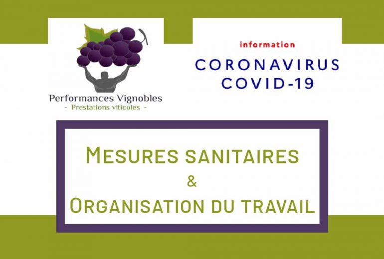performances-vignobles-mesures-sanitaires-coronavirus